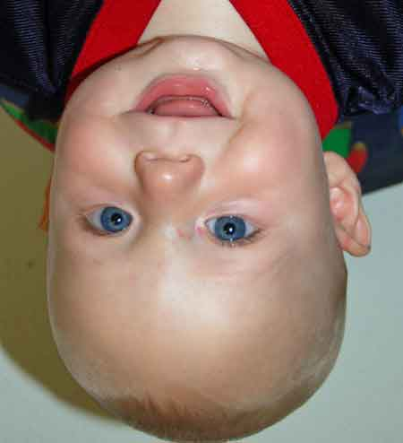 My grandson Will, upside down