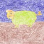Lamb faced pig by Jake