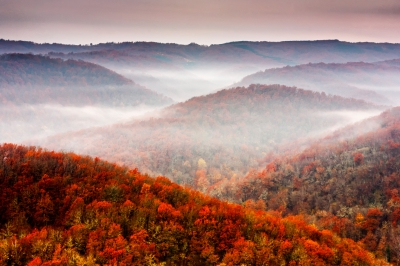 """Autumn Fogs"" by Evgeni Dinev"