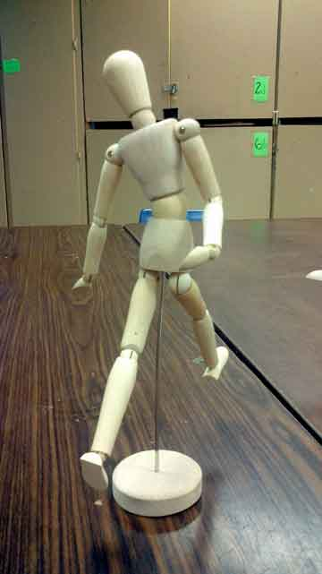 Back of Manikin
