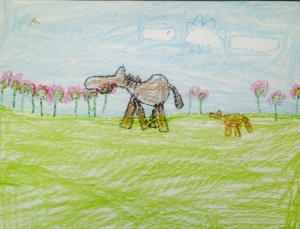 Isaac, 8, Horses in the Pasture, crayon