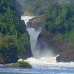 jakedehavenmurchisonfalls 150x150 October 2014 Art For Homeschool Show